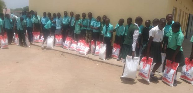Maize for Families